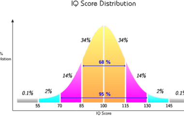 IQ BC główna